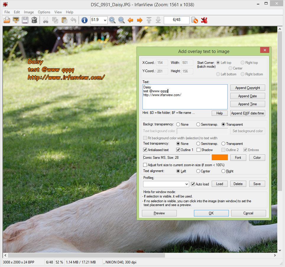 Irfan View screenshot