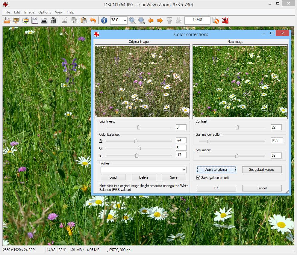Full Irfan View screenshot