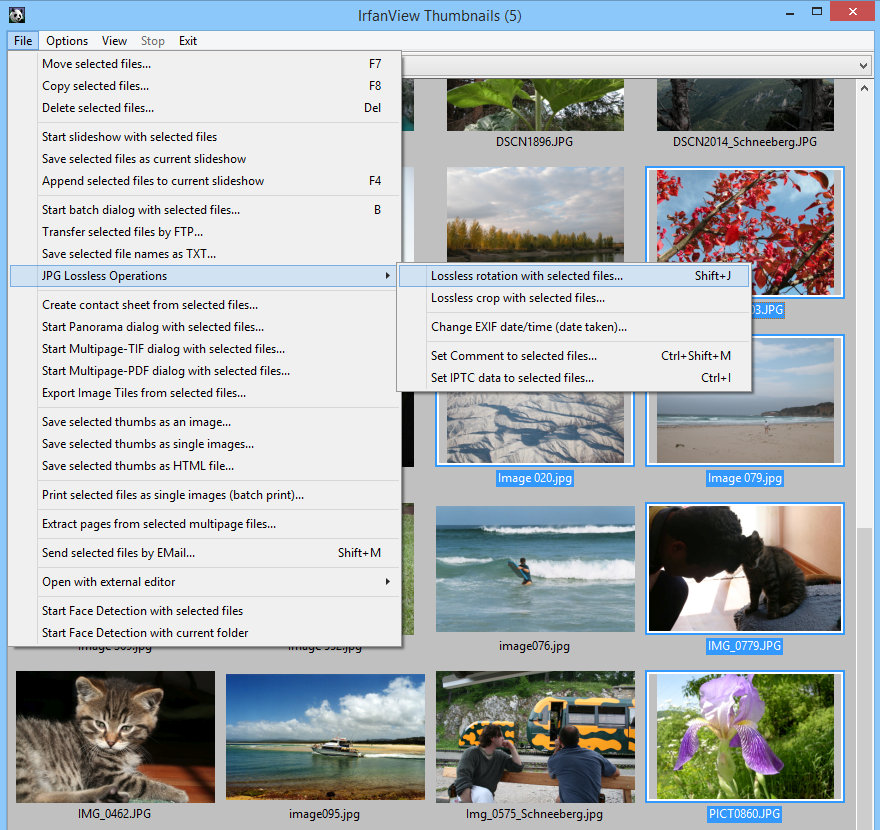 4 free photo management software for Windows 6